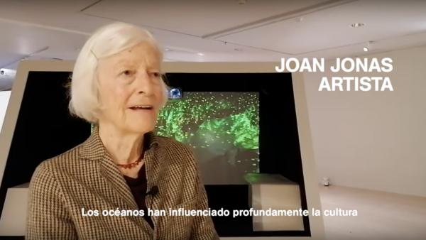 Interview with Joan Jonas