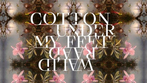 Walid Raad. Cotton Under My Feet