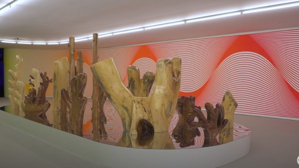 Presentación de Claudia Comte. After Nature