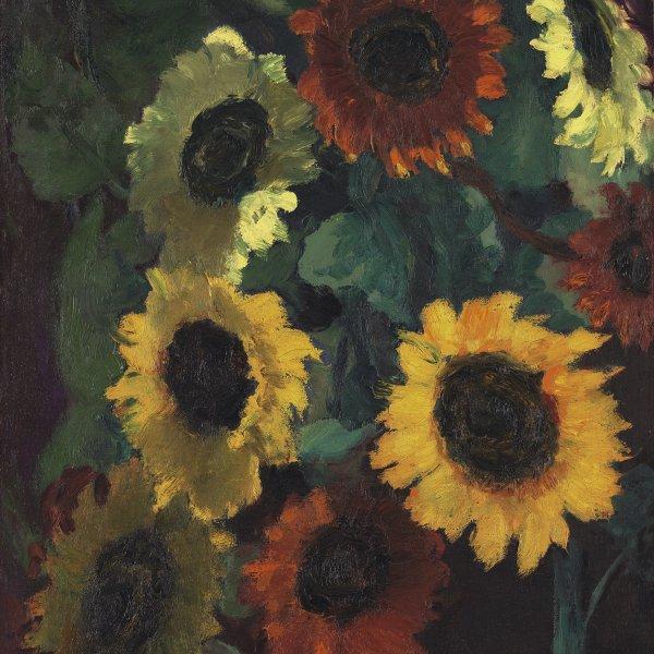 Glowing Sunflowers