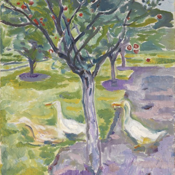 Geese in an Orchard