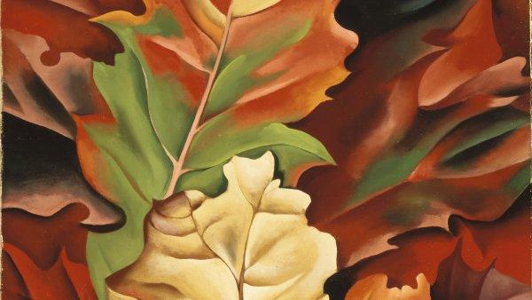 Hojas de otoño - Lake George, N.Y., 1924